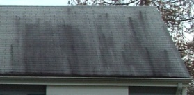 Roof washing St. Mary's county md