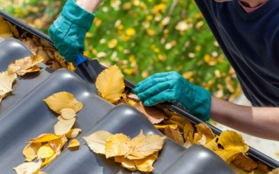 What's The Best Time of Year to Clean Your Gutters?